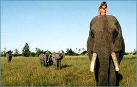 naturaleza-africa