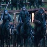 monos-a-caballo