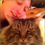 gato demoniaco