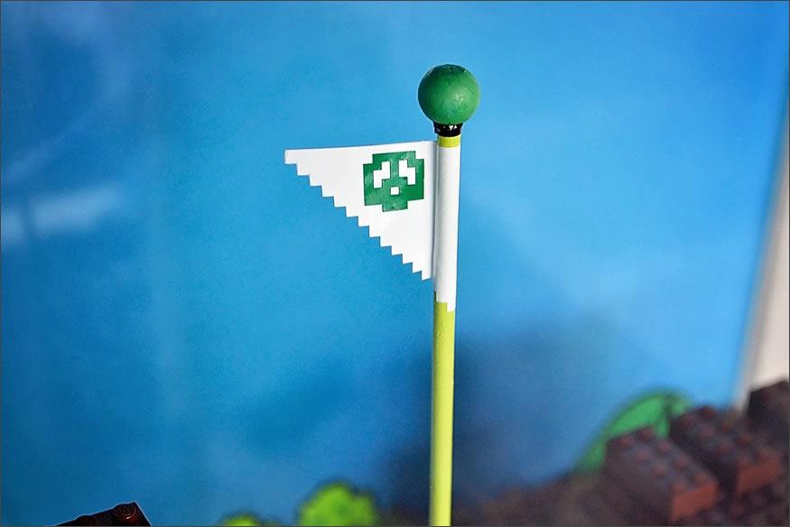 acuario-bandera