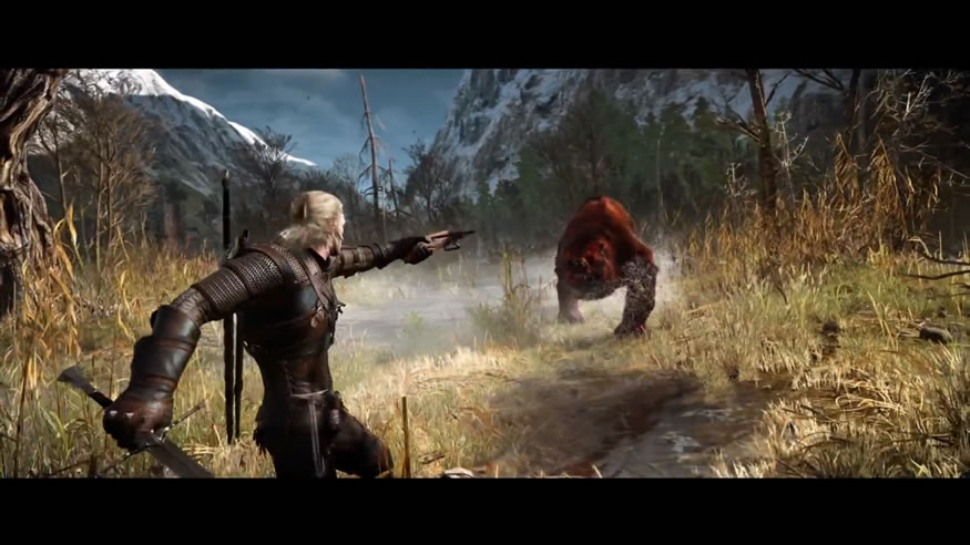 the-witcher310.55.12