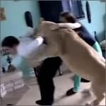 leona-ataca-periodista