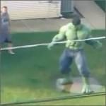 Hulk en un jardín