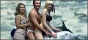 Viaje en delfín