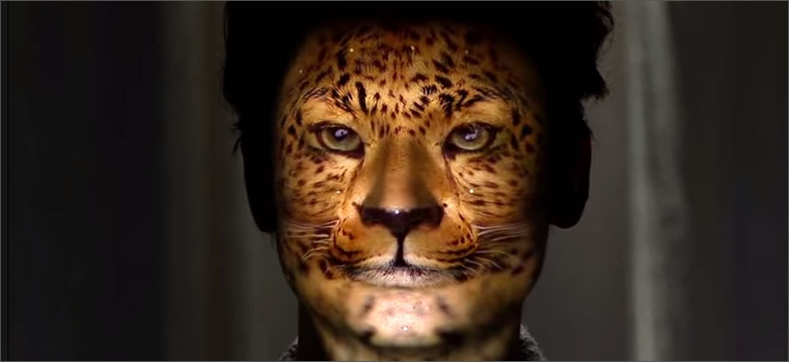 cambio-caras-tigre