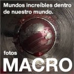 fotos-macro200