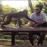 roba-mono