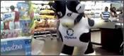 vaca de Alpura