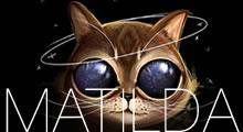 Matilda la gata alienígena