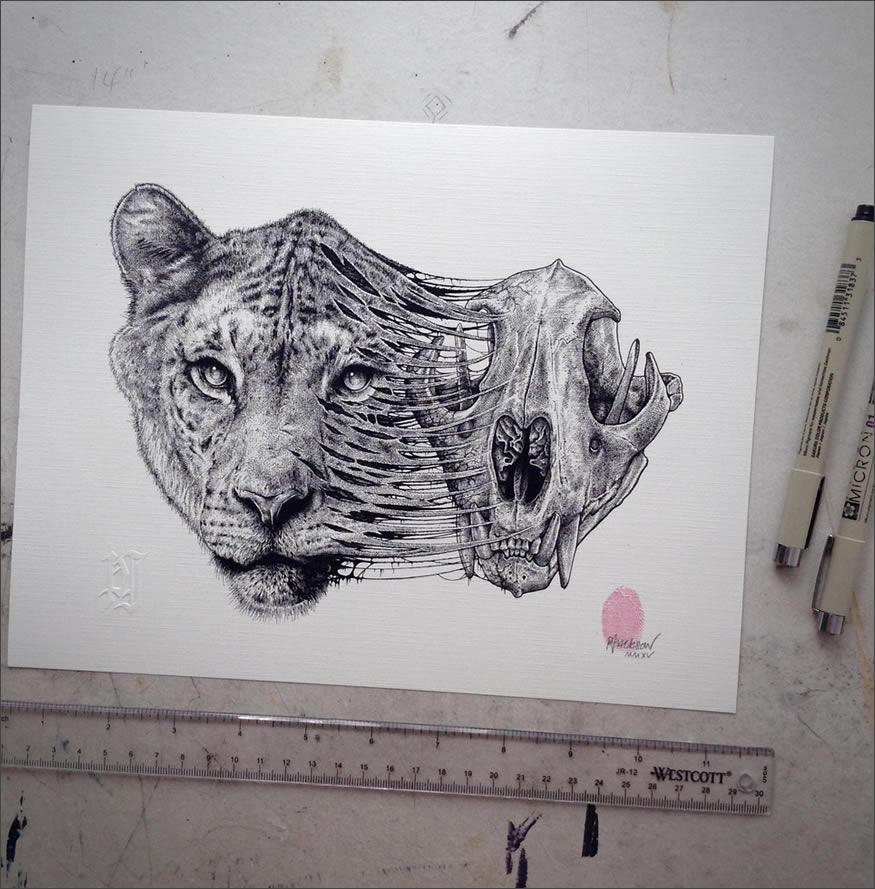 cala-leona