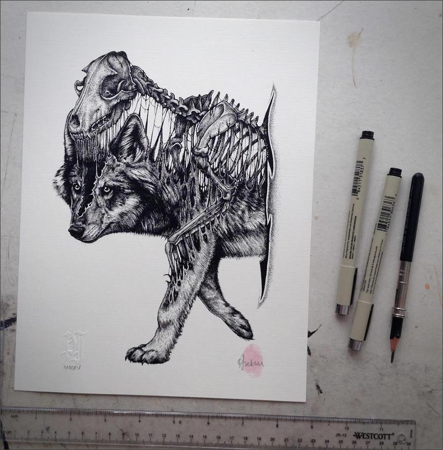 cala-wolf