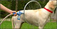Ducha de 360 grados para perros