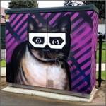 gato-pintado