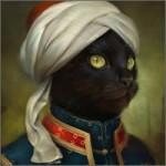 gato-posando-moruno