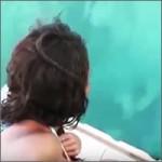 delfin-movil