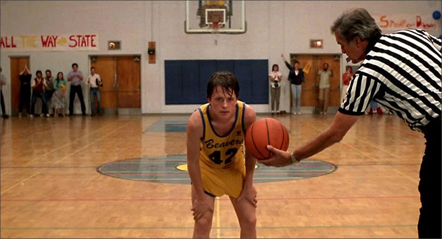 basket-wolf
