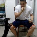 perro-medicinas-truco