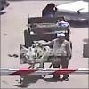 burro-tren