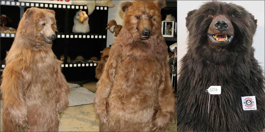 osos-disfraces