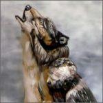 lobo-bodypaint200