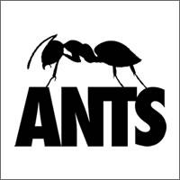 ants-200