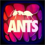 juego-ants200