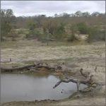 reserva-sudafrica200