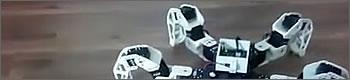 robot-spidert