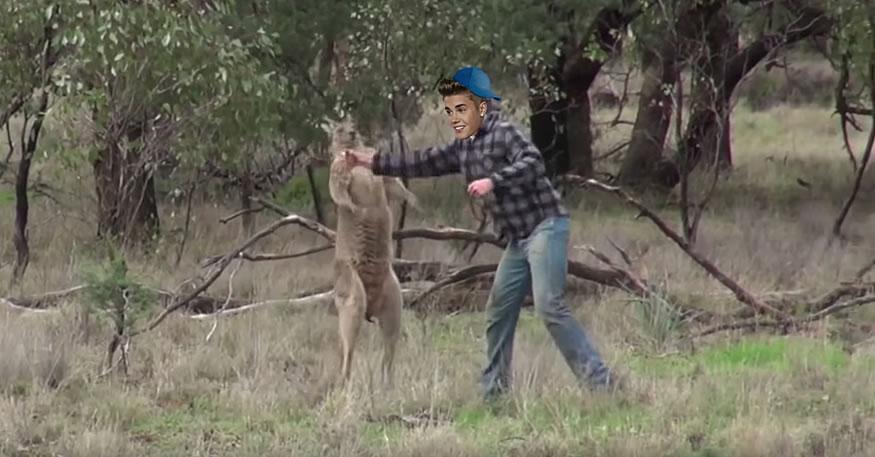 justin-canguro1