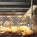 ratas-granier200