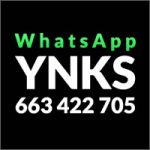 whatsapp-ynks-200