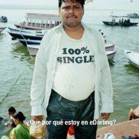 Solteros exigentes – single