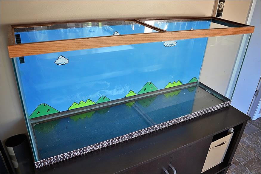 acuario-fondo