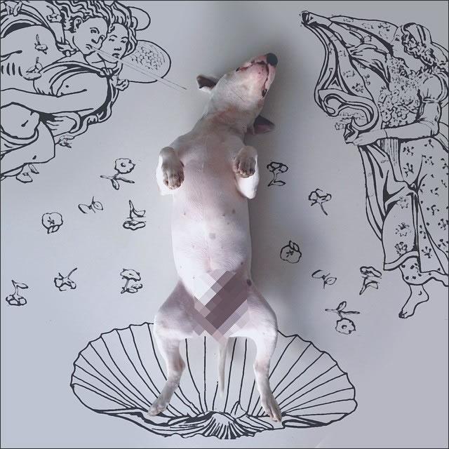 perro-cuadro