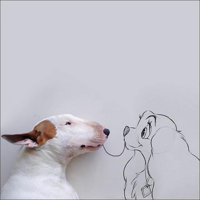 perro-spaguetti