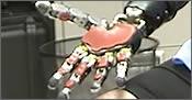 brazos cibernéticos