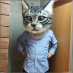 gato-cabezon