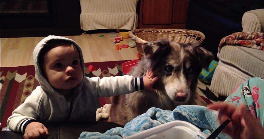 mama-nino-perro2