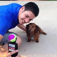Como hacerte un selfie con el perro