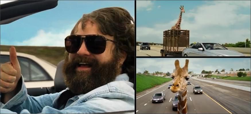 autopista-jirafa