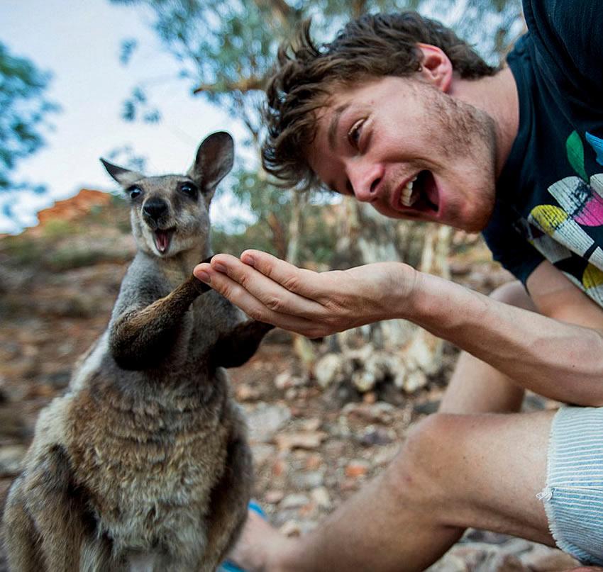 selfie-canguro