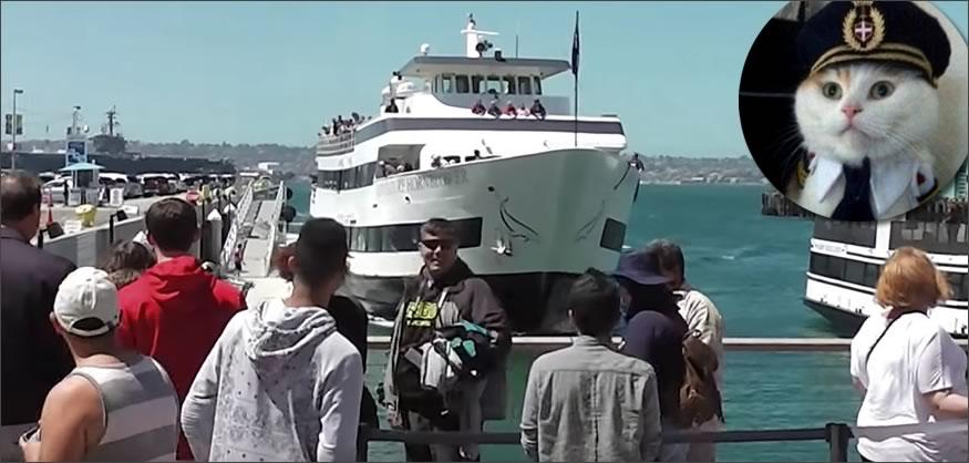 Aparcando el barco
