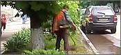 jardinero-ruso-t