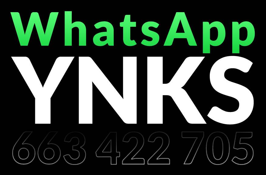 whatsapp-ynks-1