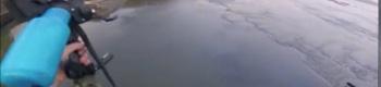 pesca-arcot